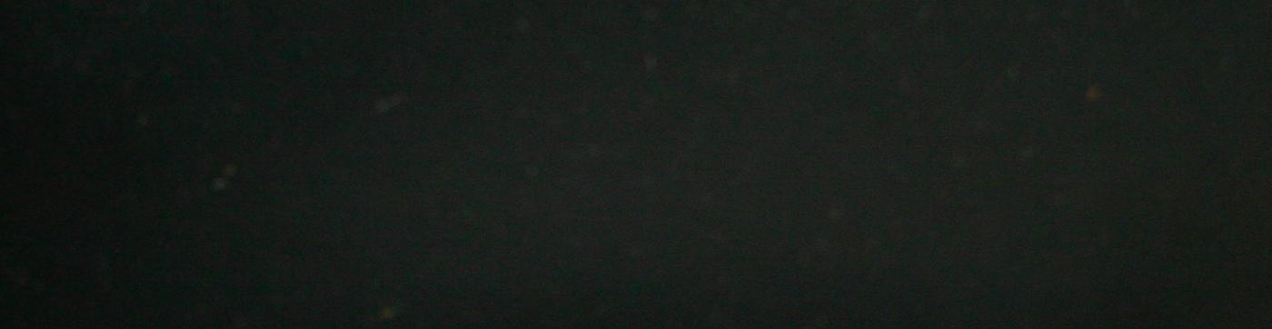 schwarz-cajon