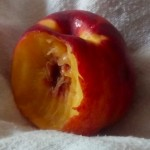 angebissener-pfirsich